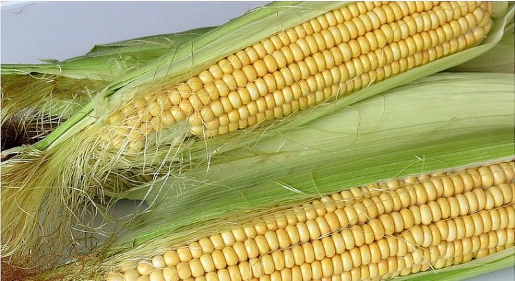 mısır haşlama